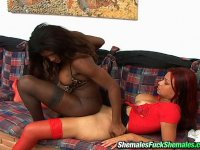 Black and white shemales mix having freaky fun drilling their yummy asses