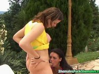 Stunning shemales having freaky fun probing their tights assholes outdoors