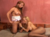 Salacious shemales indulging their passion in frenzied suck-n-fuck action